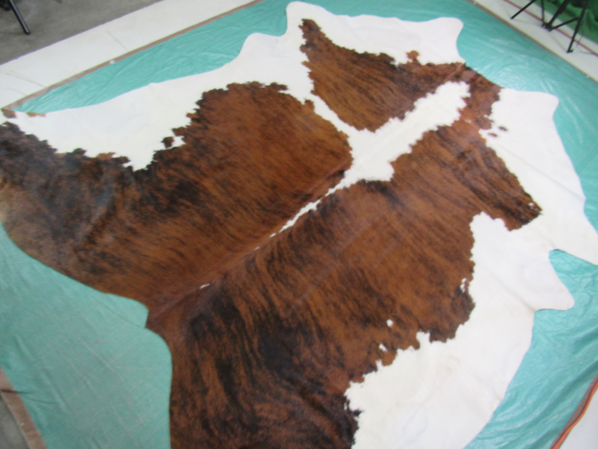 A-1139 White Belly Brindle Cowhide Rug Size: 8' X 7 3/4'