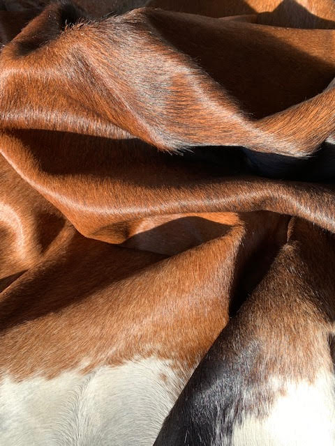 A-1295 Brown and White Cowhide Rug Size: 7 1/2' X 7'