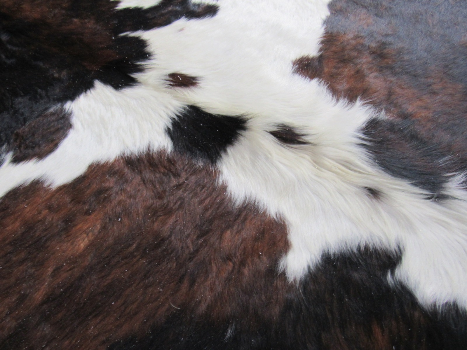 A-1303 Tricolor Speckled Cowhide Rug Size: 7 1/4' X 6 1/2'