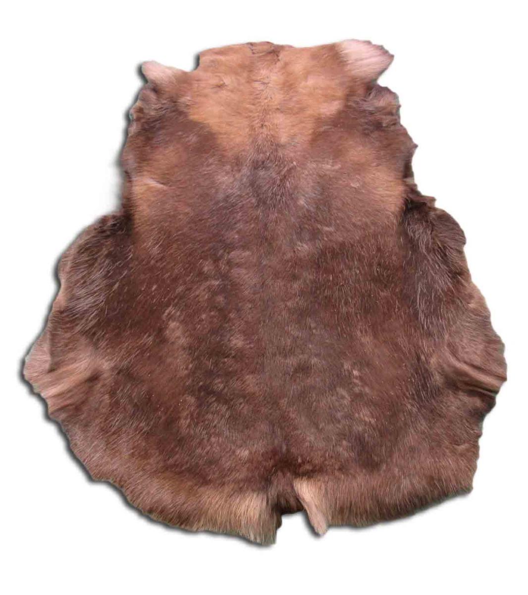 "A-1383 Reindeer Skin from Scandinavia Size: 49"" X 39"" Genuine Reindeer Skin"