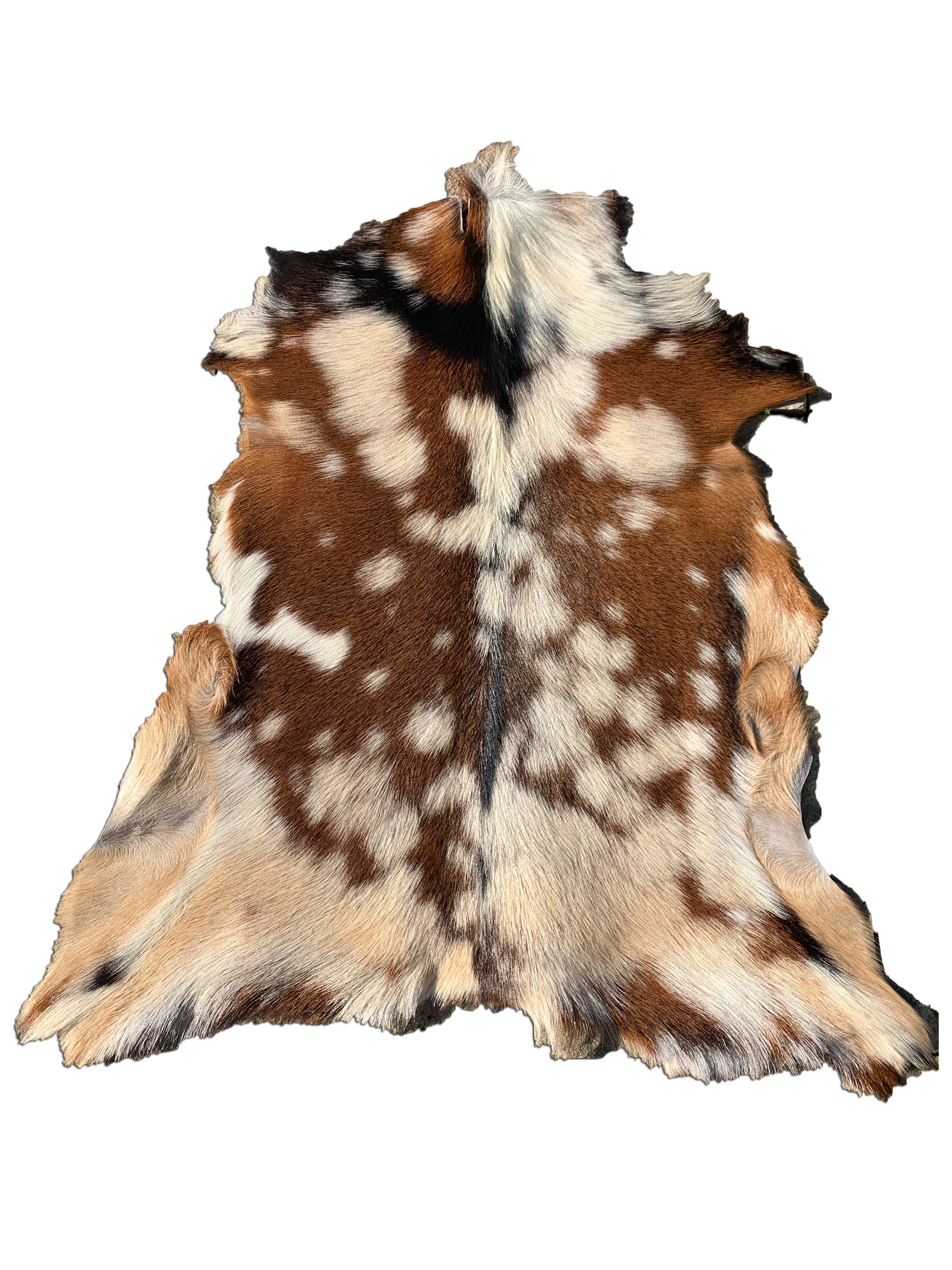 """A-992 Beige Tricolor Goat Skin - Size: 34"""" x 30"""""""