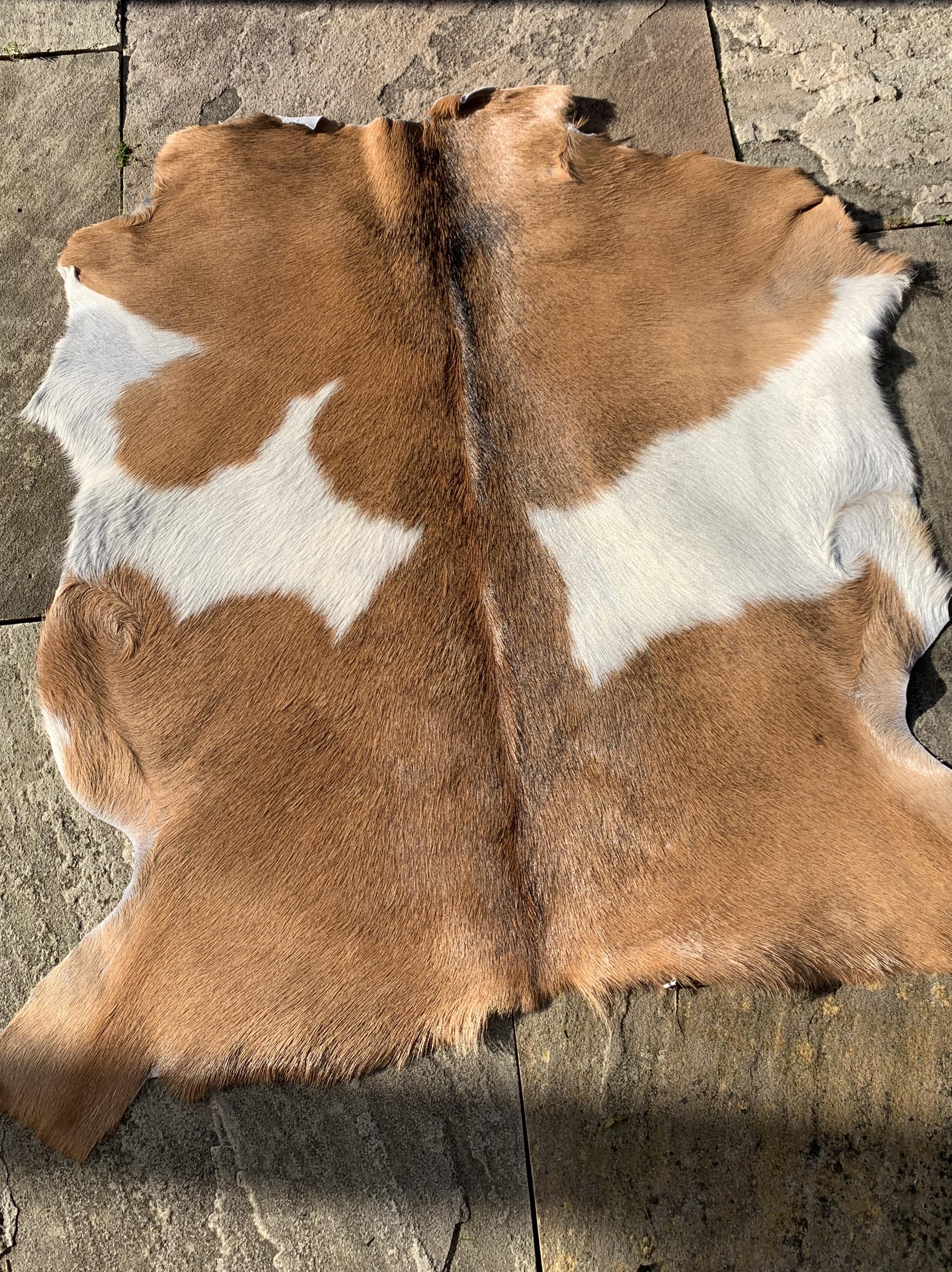 """A-993 Brown & White Goat Skin - Size: 35"""" X 35"""""""