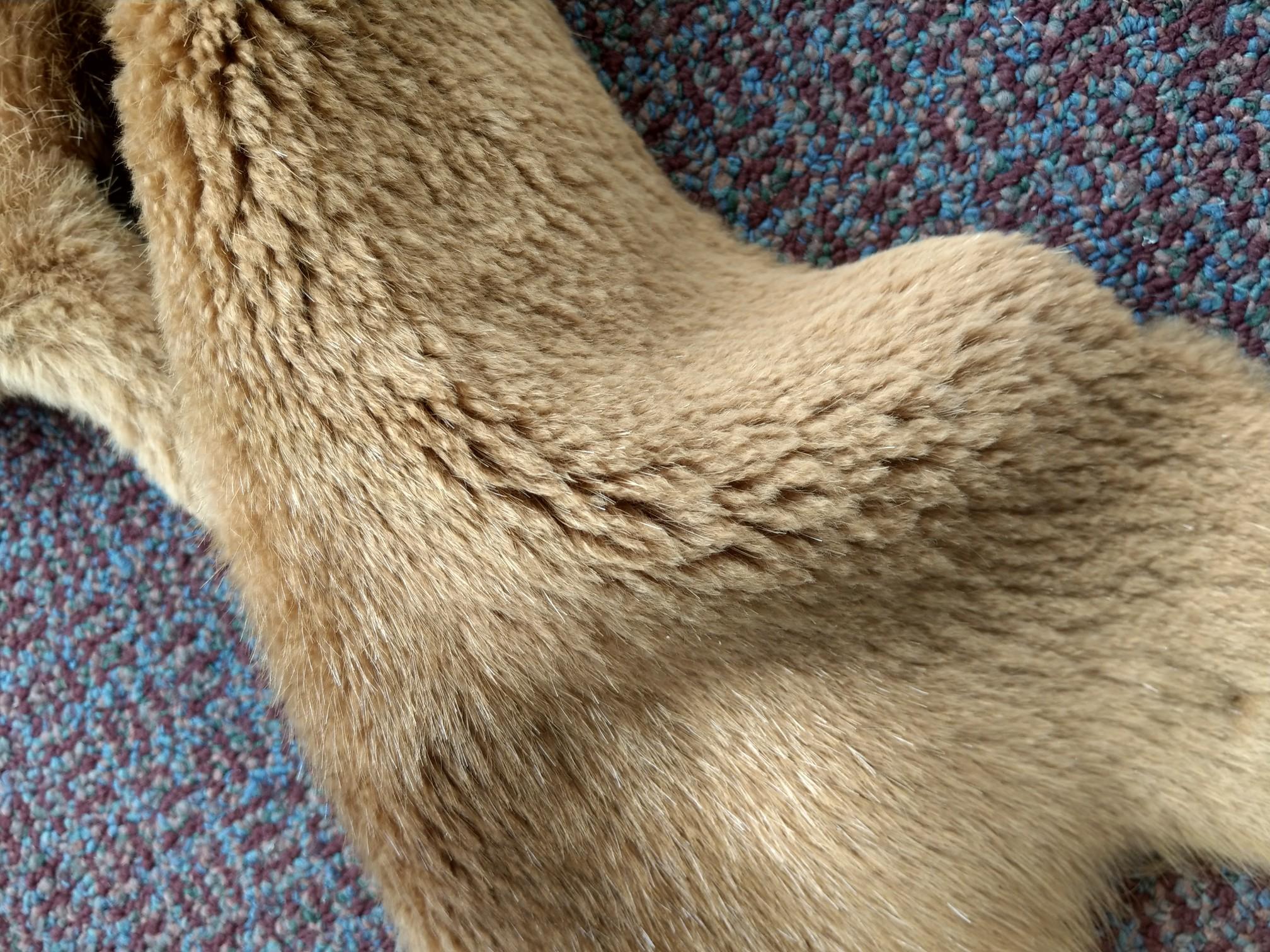 "Natural Nutria Pelt Soft Tanned Nutria Pelt Skin Size: 17"" X 13"""